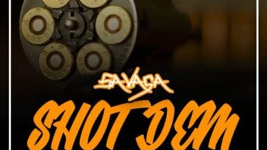 Photo of Audio: Shoot Dem by Savaga