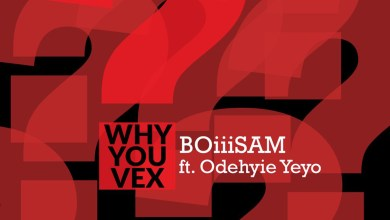 Photo of Audio: Why You Vex by BoiiiSam feat. Odehyie Yeyo