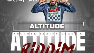 Audio: Altitude (Attitude Riddim) by Skery Zee