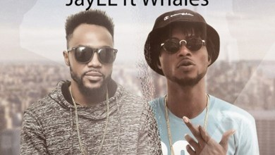 Photo of Audio: Sora by JayEL feat. Whales