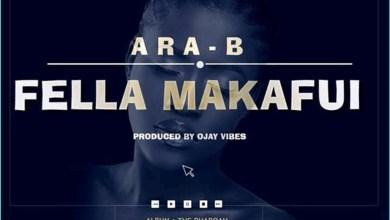 Photo of Audio: Fella Makafui by Ara B