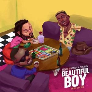 Beautiful Boy by Joey B feat. Yaa Pono & Wanlov The Kuborlor
