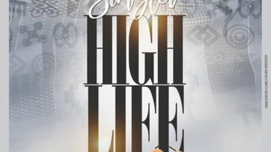 Photo of Audio: High Life by Singlet
