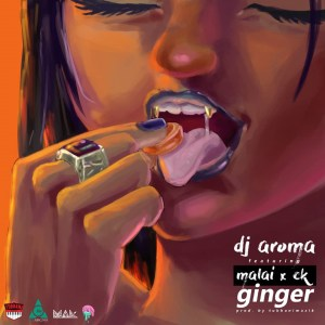 Ginger by DJ Aroma feat. Malai & CK