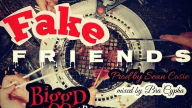 Photo of Audio: Fake Friends by BiggD Playman