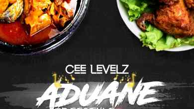 Aduane (Freestyle) by Cee Levelz