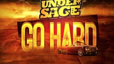 Go Hard by Under Sage