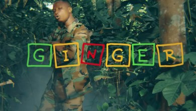 Video: Ginger by Kelvynboy