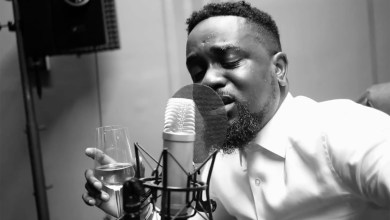 Photo of Video: My Advice (Freestyle) by Sarkodie