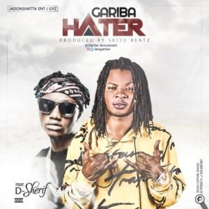 Hater by Gariba feat. D-Sherif