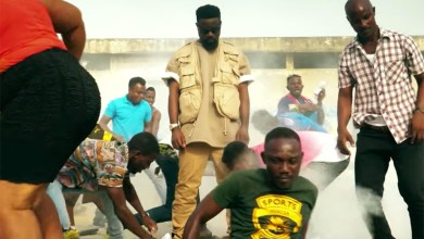 Photo of Video Review: Biibi Ba By Sarkodie feat. All Stars