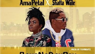 Photo of Audio: Boys No Dey Pay by Ama Petal & Shatta Wale