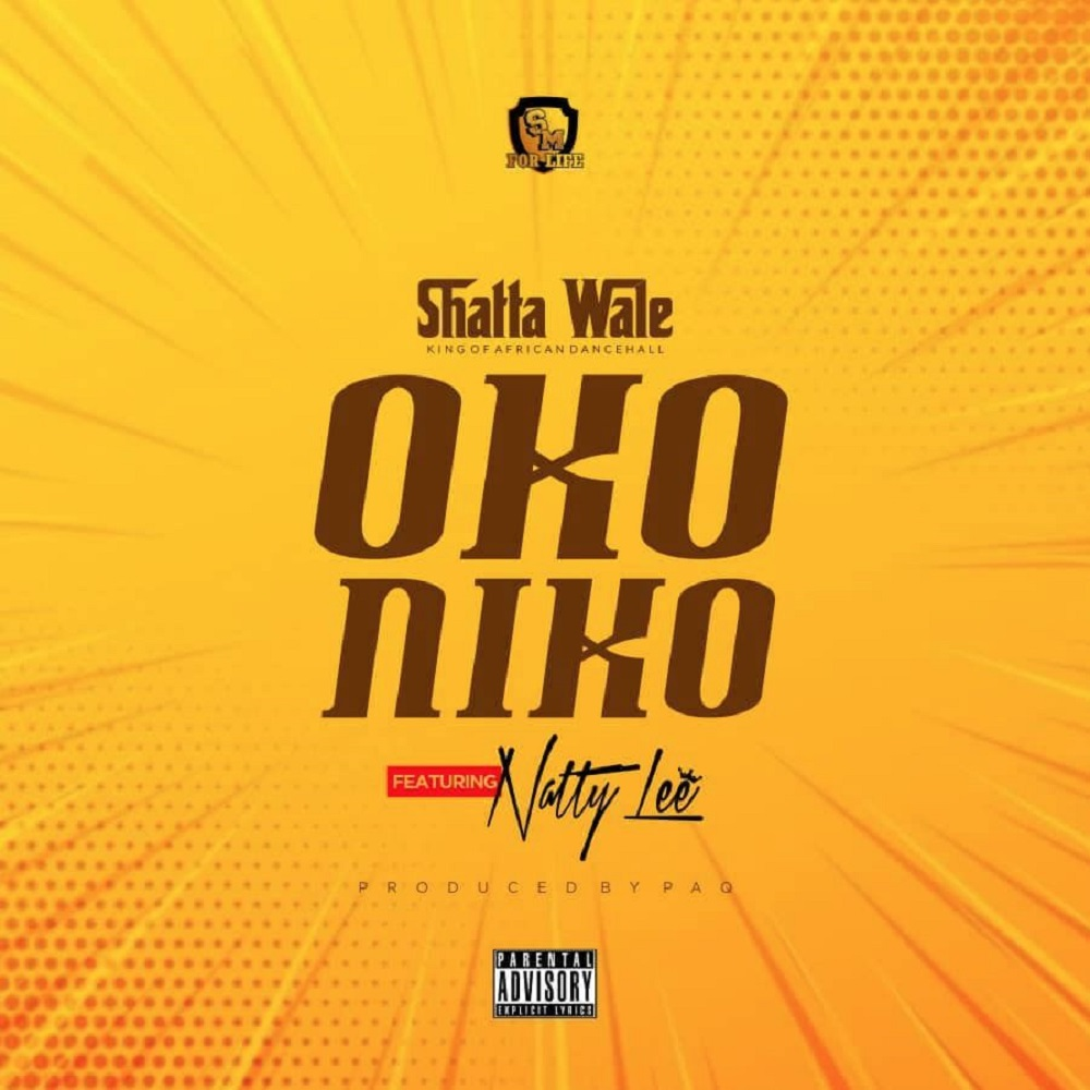Oko Niko by Shatta Wale feat. Natty Lee