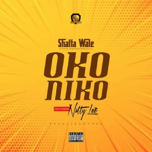 Oko Niko by Shatta Wale feat. Natty Lee