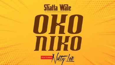 Photo of Audio: Oko Niko by Shatta Wale feat. Natty Lee