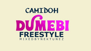 Photo of Audio: Dumebi Freestyle by Camidoh