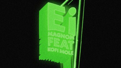 Photo of Audio: Ei by Magnom feat. Kofi Mole
