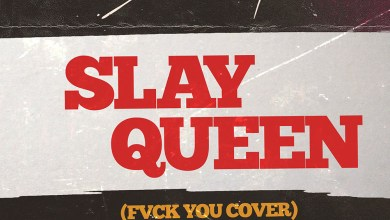 Photo of Audio: Slay Queen ((Fvck You Cover) by Stonebwoy