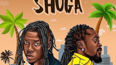 Photo of Audio: Shuga by Stonebwoy feat. Beenie Man