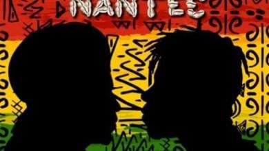 Photo of Audio: Akyekyedeɛ Nanteɛ by Kojo Antwi feat. Stonebwoy