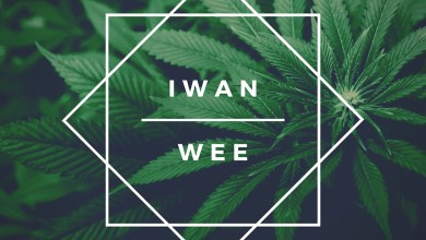 Photo of Audio: Wee by IWAN