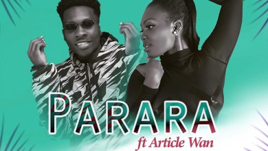 Photo of Audio: Parara by Pam feat. Article Wan