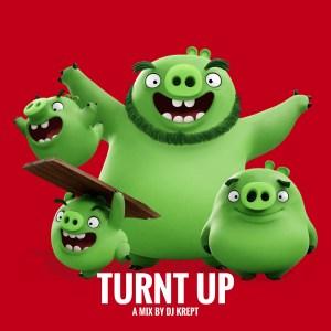 Turnt Up by DJ Krept