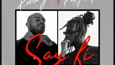 Photo of Audio: Say Fi by Kobla Jnr feat. Pappy Kojo