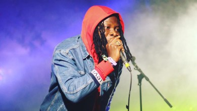 Photo of Stonebwoy sings against Xenophobia
