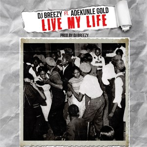 Live Your Live by DJ Breezy feat. Adekunle Gold