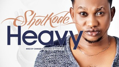 Photo of Audio: Heavy by ShotKode