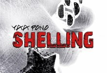 Photo of Audio: Shelling by Yaa Pono