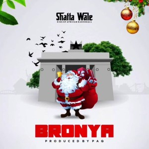 Bronya by Shatta Wale
