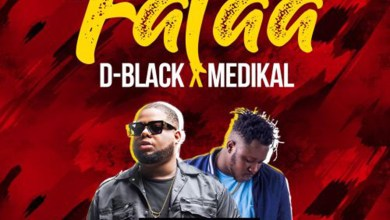 Photo of Audio: Falaa by D-Black feat. Medikal