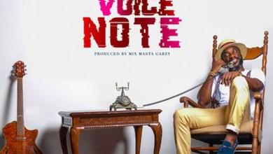 Photo of Audio: Voice Note by Kwabena Kwabena