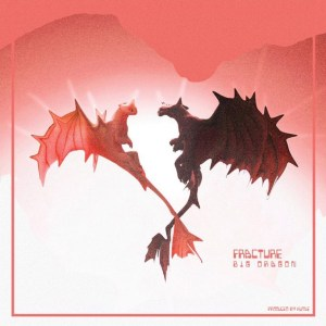 Fracture by BigDraGon