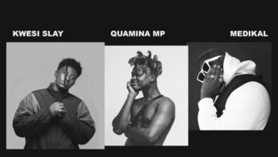 Photo of Audio: Pussy Cat by Kwesi Slay feat. Quamina MP & Medikal