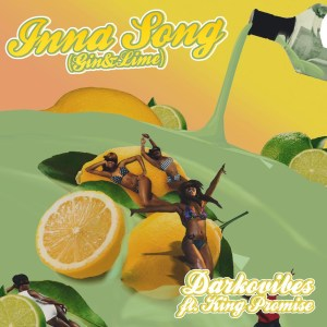Inna Song (Gin & Lime) by Darkovibes feat. King Promise