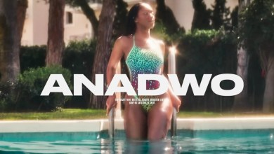 Photo of Video Premiere: Anadwo by Sarkodie feat. King Promise