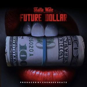 Future Dollar by Shatta Wale