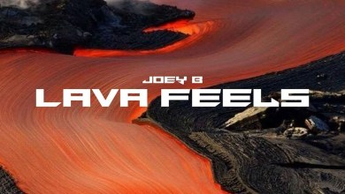 Photo of Album: Lava Feels by Joey B