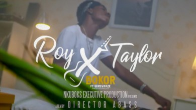 Photo of Video: Bokor by Roy X Taylor feat. Skrewfaze