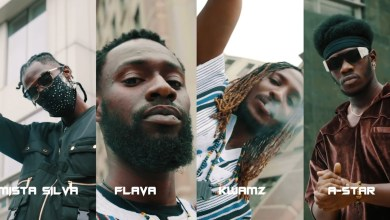 Photo of Video: Dance With The Kings by A-Star, Mista Silva and Kwamz & Flava