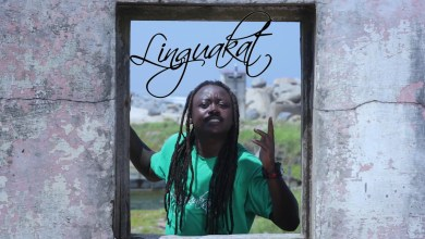 Photo of Video: World Love by Linguakat feat. Jah Amber