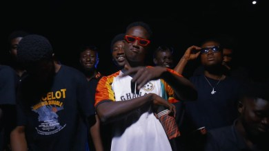 Photo of Video: Large by N.Loso