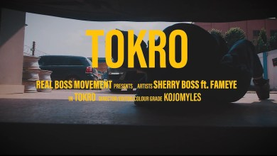 Photo of Video: Tokro by Sherry Boss feat. Fameye