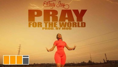 Pray For The World by Wendy Shay