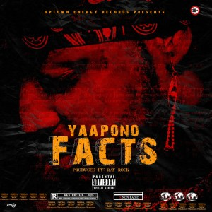 Facts by Yaa Pono