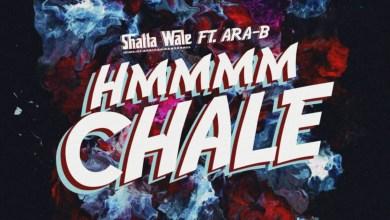 Hmmm Chale by Shatta Wale feat. Ara-B