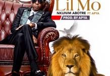 Lil Mo - Nkonim Abotre